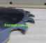 Пила для продольного пиления Dimar 90100306 (250x30x3,2x2,2) Z20 0
